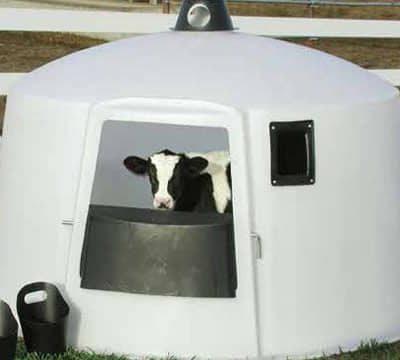 Calf Huts Polydome